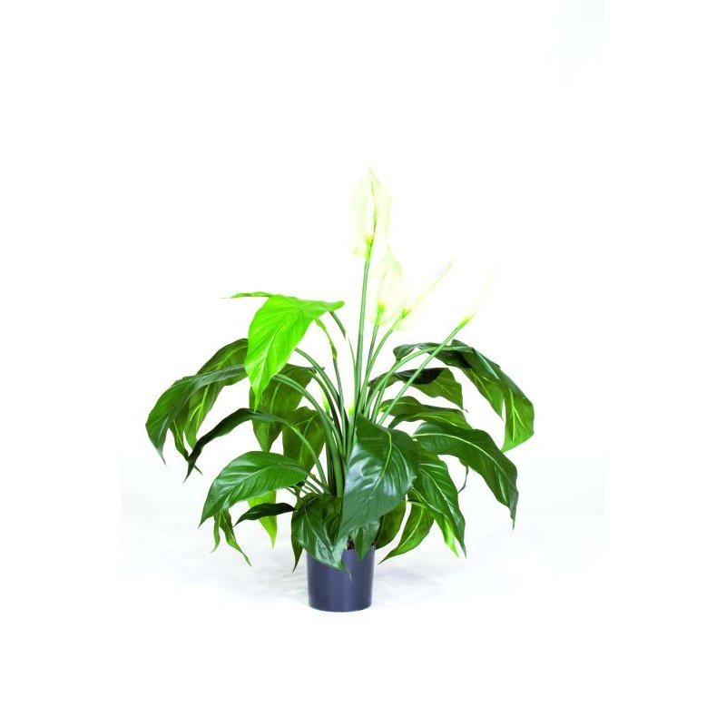 kunstpflanze spathiphyllum deluxe im florando versand shop bestellen. Black Bedroom Furniture Sets. Home Design Ideas